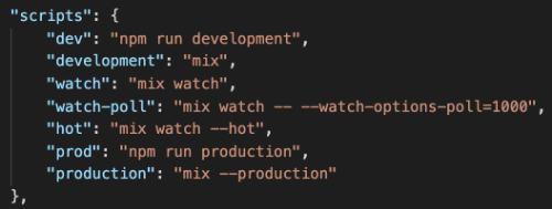 declaración de los scripts en el archivo package.json